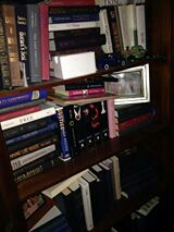 Author R.L. Griffin's Shelfie