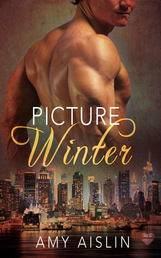 Picture Winter_Amy Aislin_cover.jpg